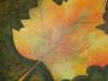 Burgl2 Herbstbild